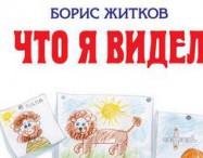 рассказ что я видел, Житков